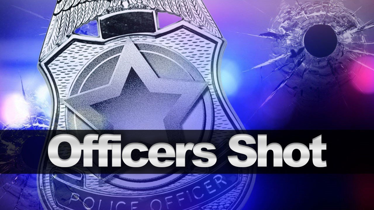Sheriff's office: Suspect in custody after 2 officers shot