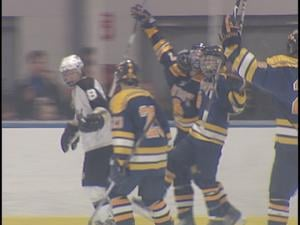 Wausau West players celebrate following a goal during Tuesday's hockey tournament game against Lakeland
