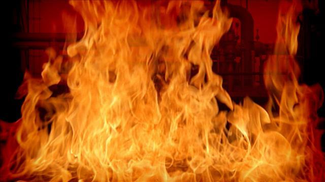 62 die in forest fire still raging in Portugal