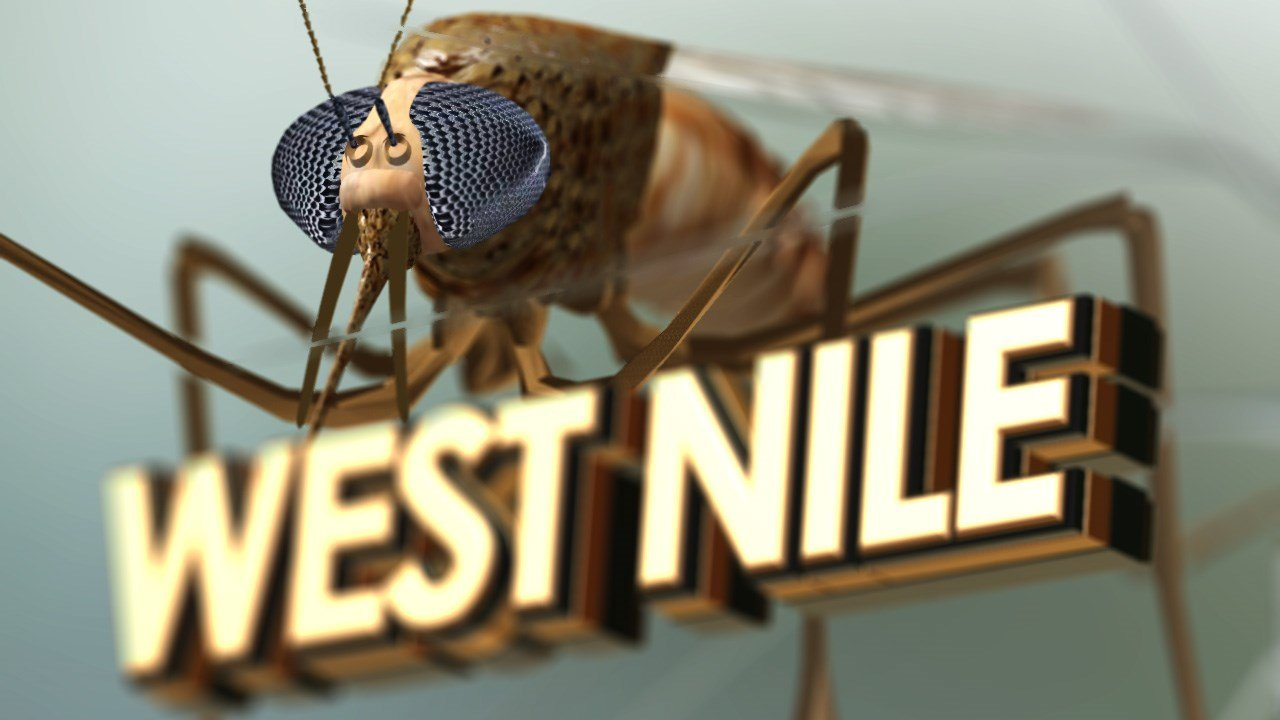 IL reports 1st human case of West Nile virus this year