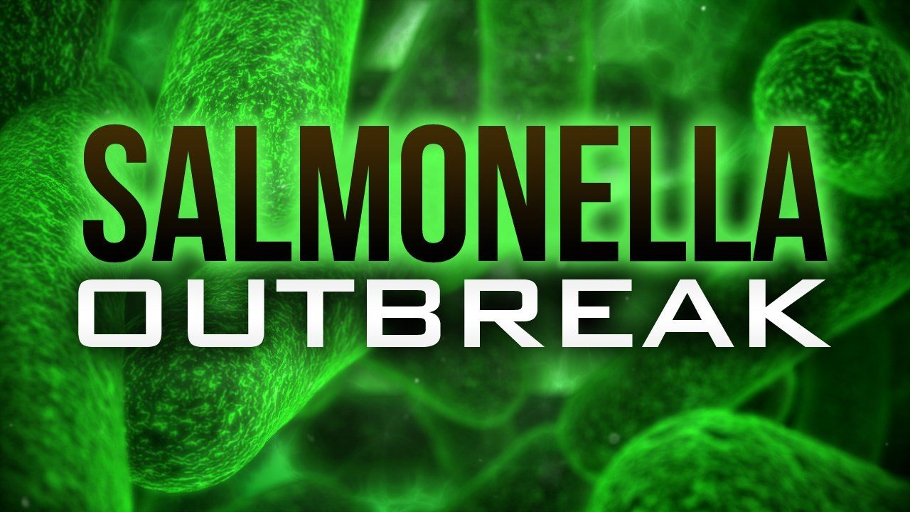Jimmy John's sprouts linked to multistate salmonella outbreak