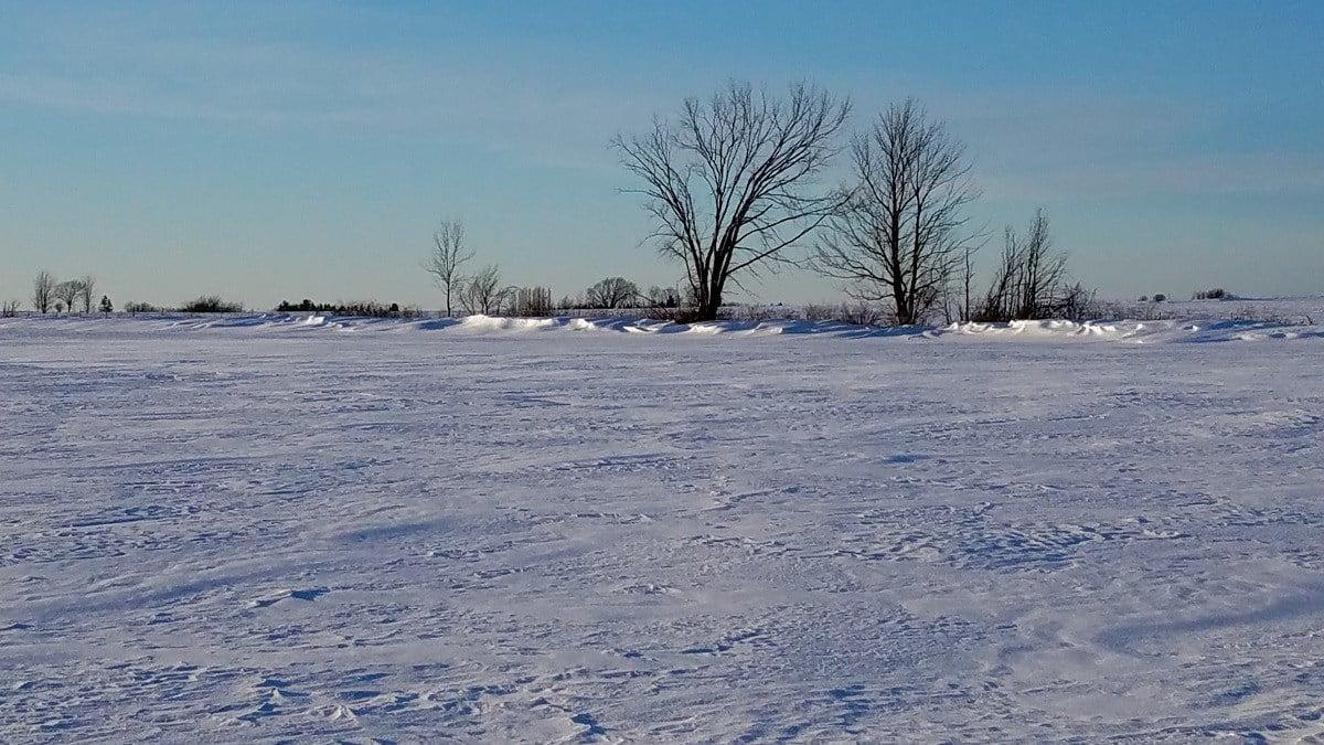 Frigid February weather