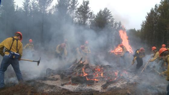 Firefighters practice fighting wild fires in 2015.